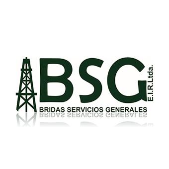 Bridas Servicios Generales (BSG)