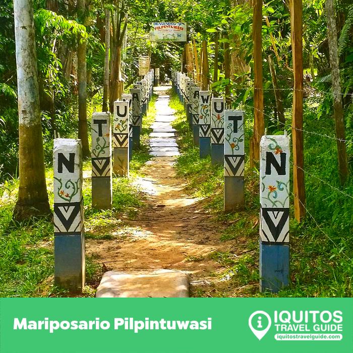 El Mariposario Pilpintuwasi de Iquitos