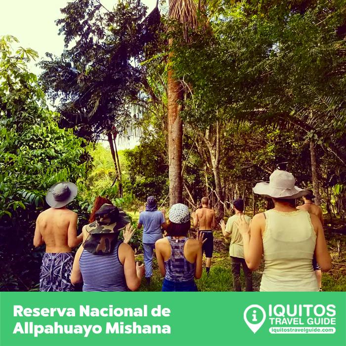 La Reserva Nacional Allpahuayo Mishana de Iquitos
