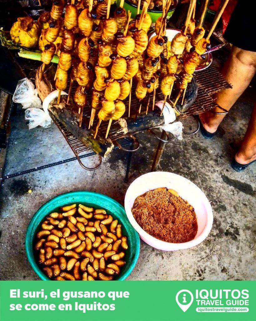 El Suri, plato tipico gastronomia selva peruana