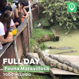Full Day – Fauna Maravillosa [Todo incluido]
