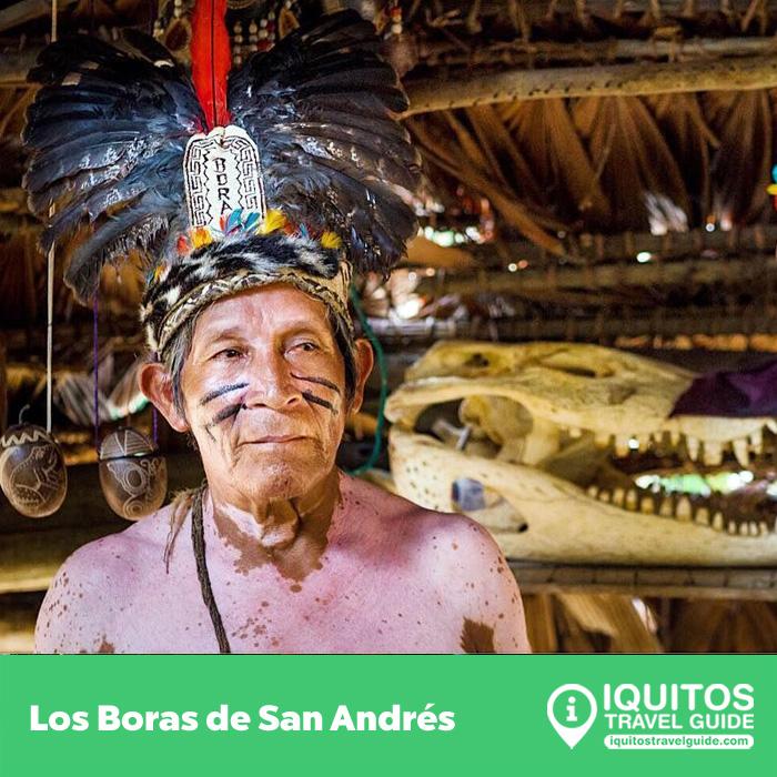 Padre Cocha, isla en el corazón de la selva peruana