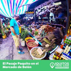 Full Day – La Venecia Amazónica [Económico]