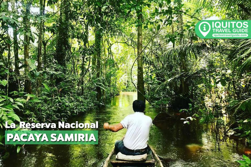 La Reserva Nacional Pacaya Samiria de Iquitos