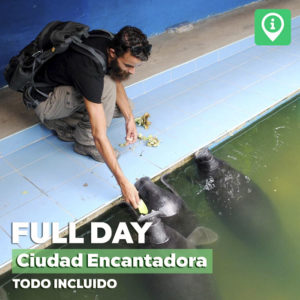 Full Day – Ciudad Encantadora [Todo incluido]